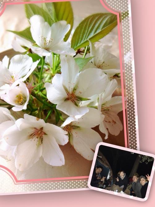 お花見☆in光が丘公園☆