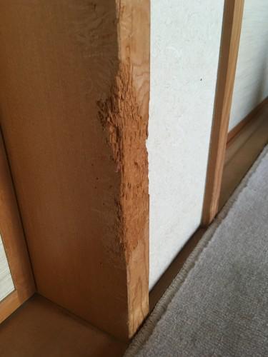 柱、建具、家具の犬、猫の引っかき傷の補修(修理)です