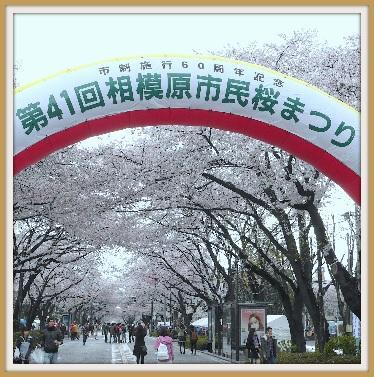 桜まつりイベント占い出店しました
