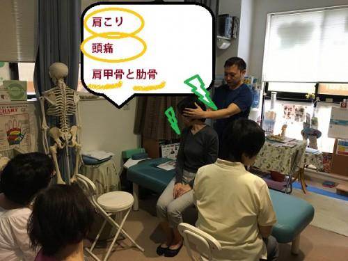 登戸整体 肩こりの原因 肩甲骨と肋骨の関係