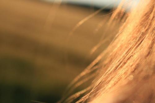 秋冬のヘアケアで、夏の蓄積ダメージに負けない美髪を