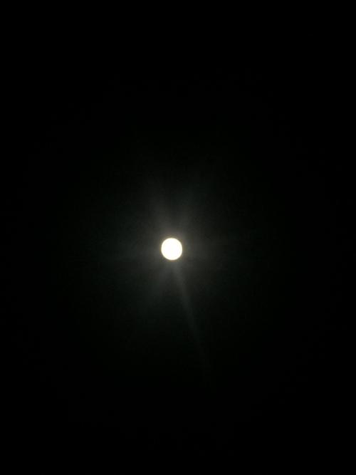 光の世界へ~満月のチャネリングメッセージ