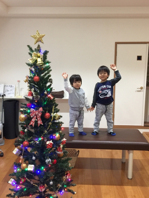 クリスマスツリーを飾りました!!