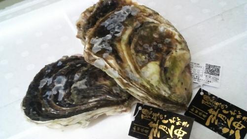 岩牡蠣!日本酒のお供に最高です!!