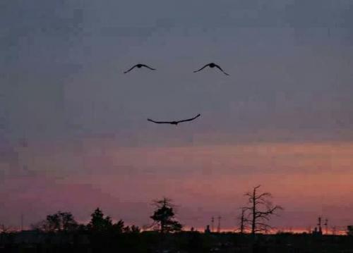 「笑顔・感謝」はするものではないよ…
