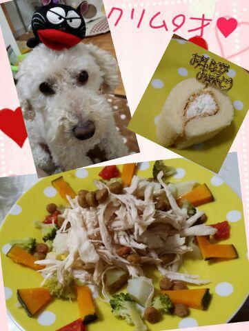 愛犬★誕生日