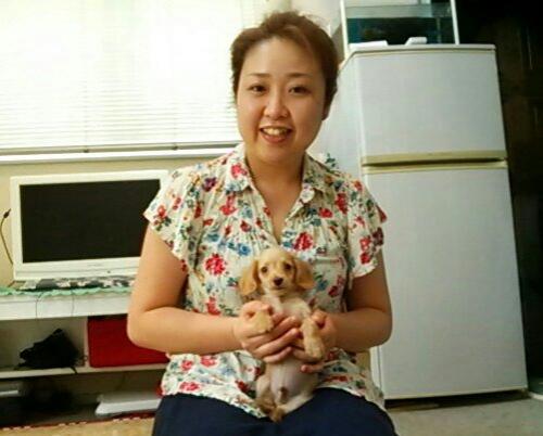 ハルくんお迎え(Mダックス子犬)