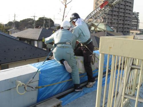 安行四季彩マット屋上緑化施工例!マットがついに屋上へ!