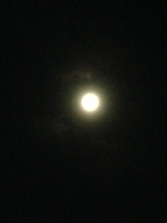 9月9日の十六夜の月が、満月(スーパームーン)だそうです。