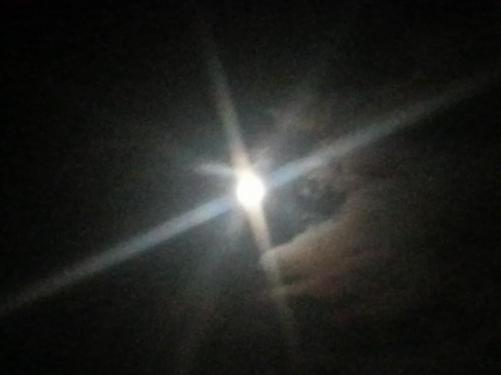 インドの満月