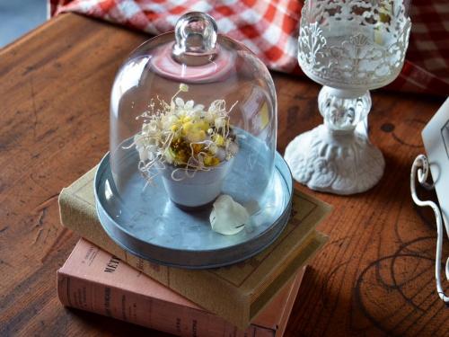 グランシュマンのガラスフードカバー
