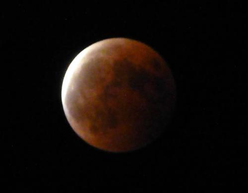 皆既月食 ご覧になれました?