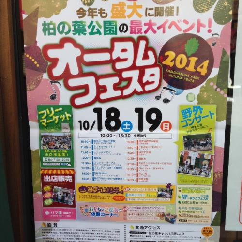柏の葉公園イベント