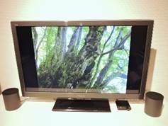 MTVS エムズテレビスピーカー
