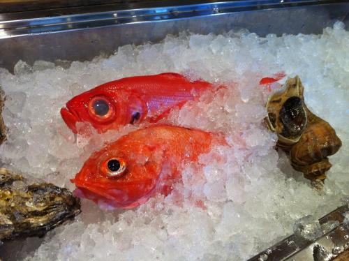 きんき、きんめ、牡蠣、鰤入荷してます〜