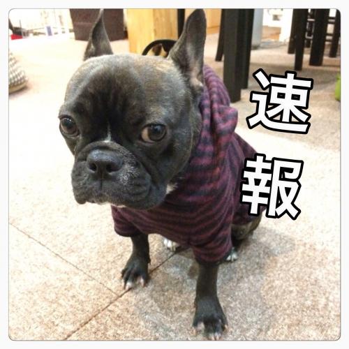 12/14(日)・空席情報!