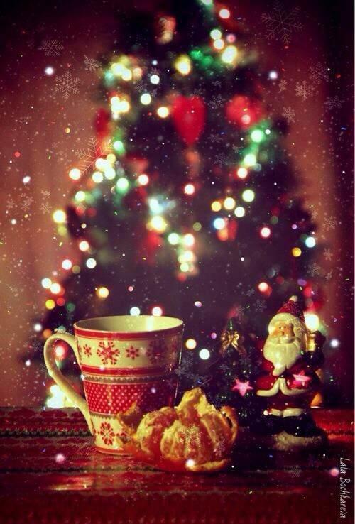 皆様!!Merry Christmas!! ヽ(^o^)丿☆