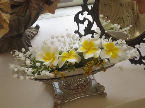 春の黄色い花々に囲まれて