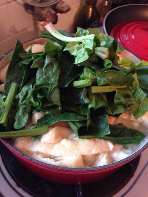 メチャうま湯豆腐情報です