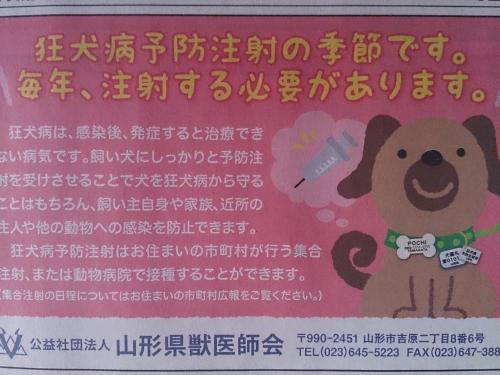 狂犬病予防注射の日程