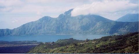 Bali  Arabika《バリアラビカ》