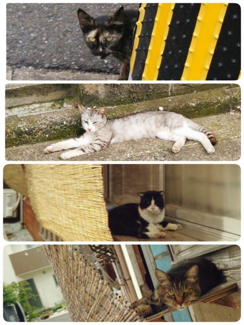 猫町姪浜のリンパマッサージ&カキラサロン