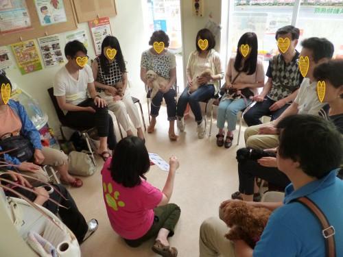 子犬の触れ合い:2015.6.13