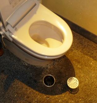 トイレの排水管でチョウバエ駆除を実施