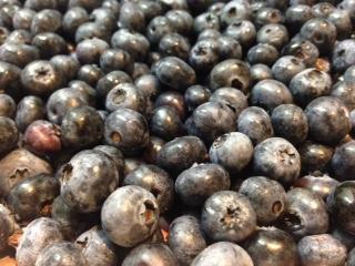 Blueberry!!!!!