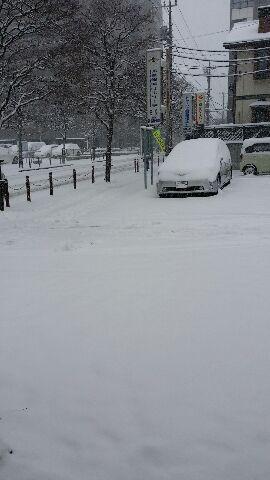 大雪だぁ(*_*)