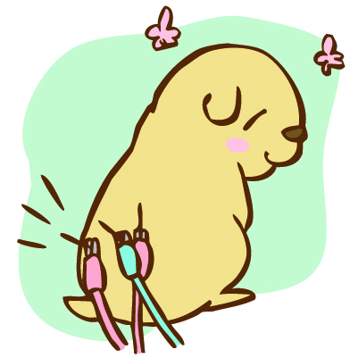 犬、猫の椎間板ヘルニアと同じような症状腰の痛み症状