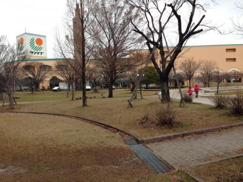 激寒の中、公園へ…(;´Д`A