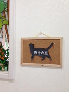 猫の待合室ができました。