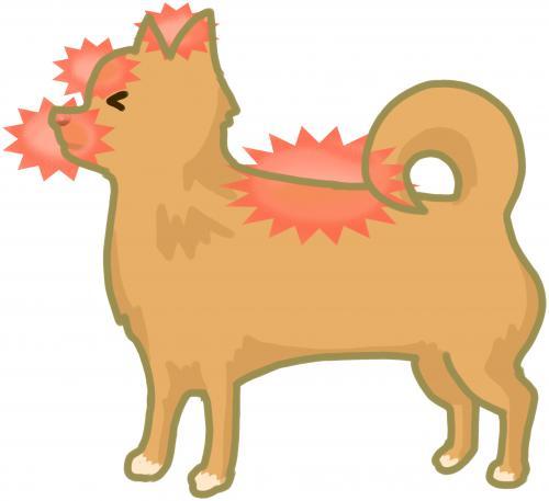 犬、猫の顔面麻痺や後肢の痛みなどに関与している胆経