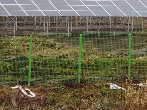 東川町のメガ太陽光発電