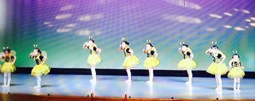 港北ダンスフェスティバル  写真掲載  妙蓮寺