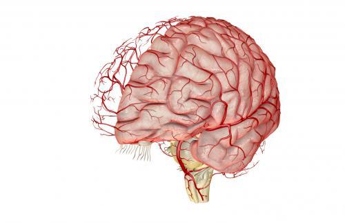 認知症について思うこと、考えること