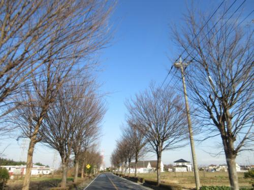 不用品回収お片付け、埼玉北部、群馬東部地域お気軽に…。