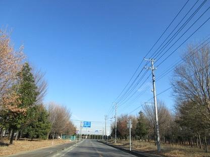 埼玉北部、群馬東部地域、不用品ごみお片付け、断捨離。
