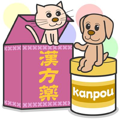 犬の特発性慢性肝炎の治療のその他の治療について