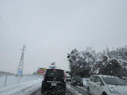雪で大変です…。