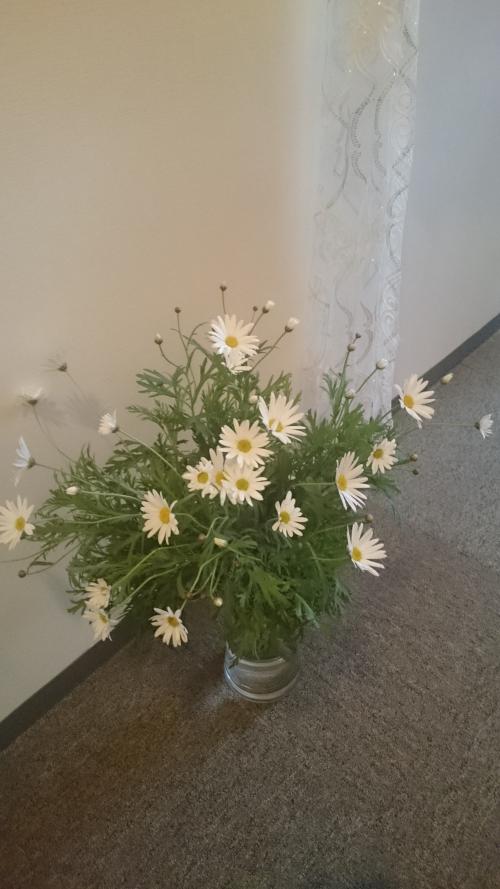 お花を飾りました( ´∀`)