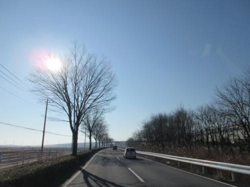 陽に照らされた大地、たゆたう靄の日曜日。