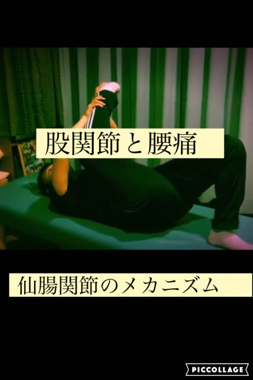 仙腸関節 ストレッチ動画 オンラインセミナー