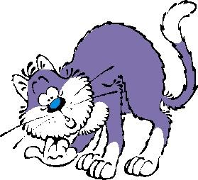 猫の肝臓の病気の肝外胆管閉塞の診断について