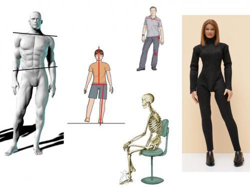 日々の動作が骨盤&股関節に与える影響を考える