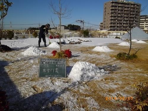 雪景色な安行四季彩マット!除雪!屋上緑化の管理!