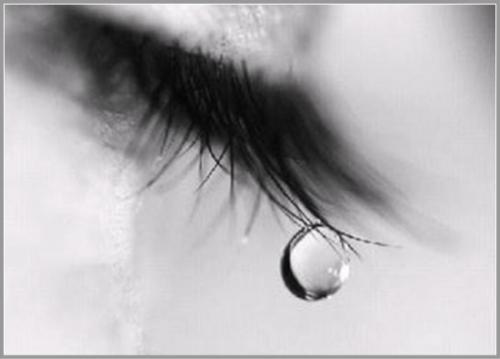 癒しと細胞キラキラKaQiLa~泣いてもいいんですよ~