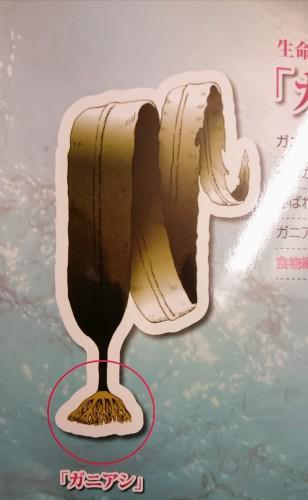 ★頭皮ケア講習会★お客様アンケート42★
