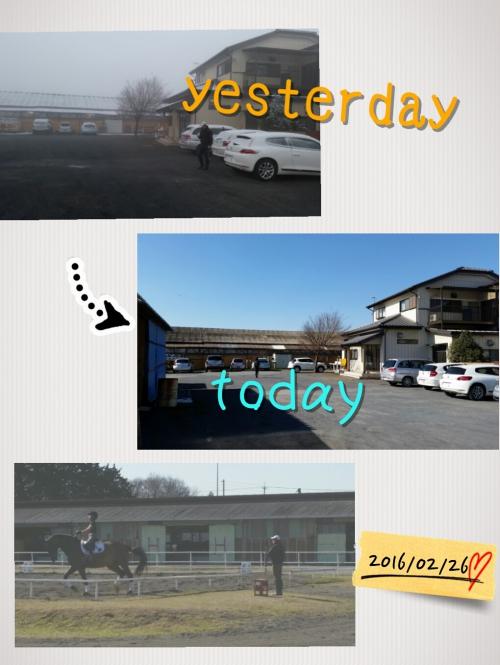 本日は晴天な〜り!